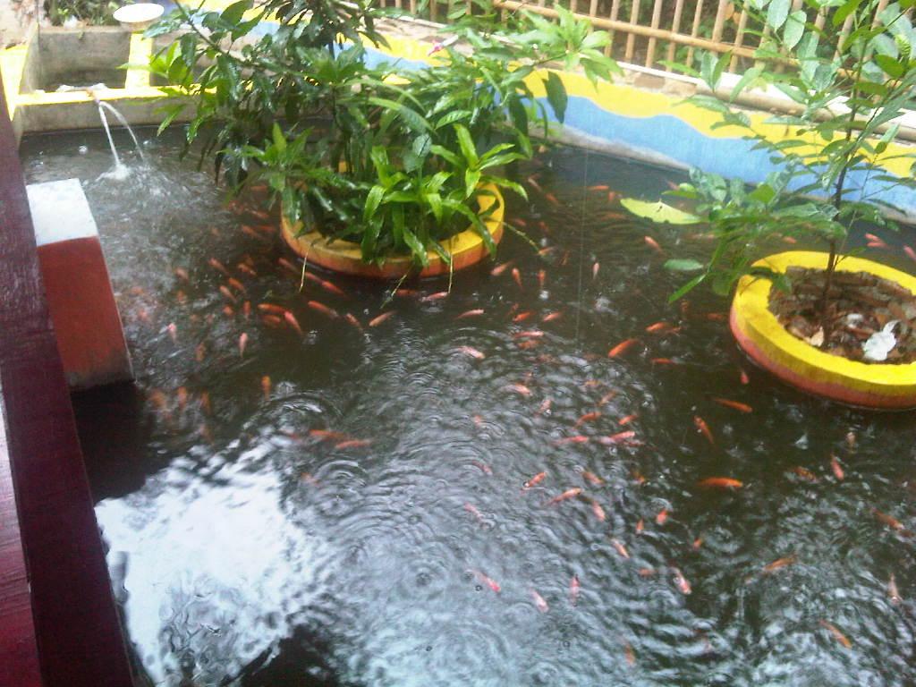 Tambun-20121107-02066